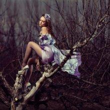 cvetochnaja-rapsodija_b04